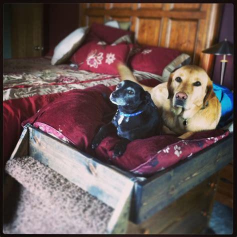 homemade dog bed homemade dog bed dog shelters and beds pinterest