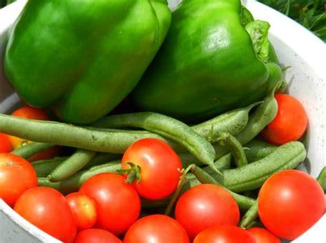 alimento rico en vitamina c alimentos ricos en vitamina c fuerakilos