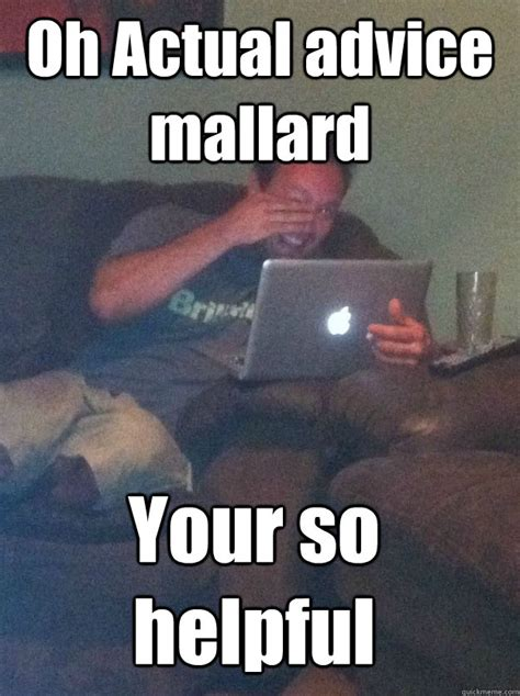 Advice Memes - oh actual advice mallard your so helpful meme dad