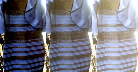 Blue And Black Or White And Gold Dress by Why Some See The Dress As White Gold Others Blue Black