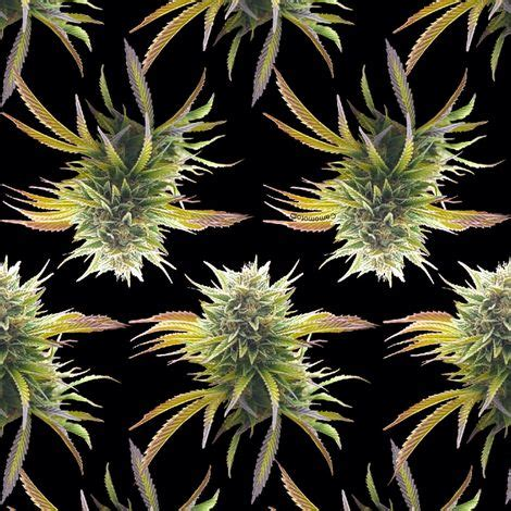 Marijuana Also Search For Marijuana Buds On Black Fabric By Camomoto On Spoonflower Custom Fabric