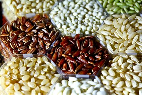 and rice food cook up these 5 fair trade grains and rice one green planet
