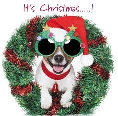 quality merry christmas happy  year cards cute comedy santa dogs puppies
