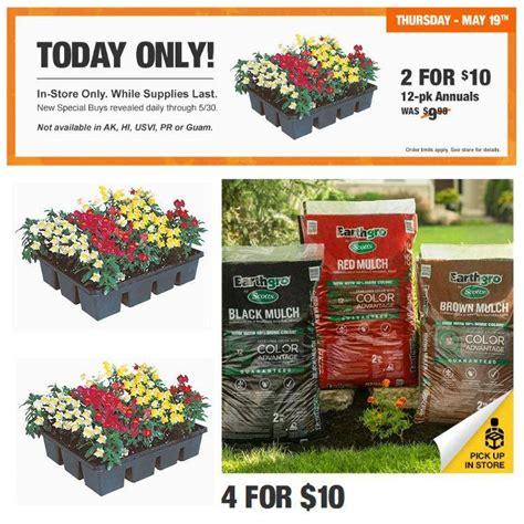 Good Home Depot Garden Plants #2: Home-Depot-Flowers-On-Sale.jpg