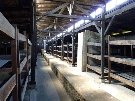 Concentration C Bunk Beds Lebanese Author Jews Will Be Punished With Second Holocaust Bunk Beds Auschwitz Algemeiner