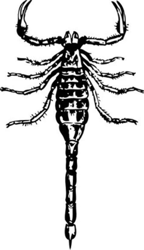 แมงป่องปะ-เวกเตอร์ปะ-เวกเตอร์ฟรี ดาวน์โหลดฟรี