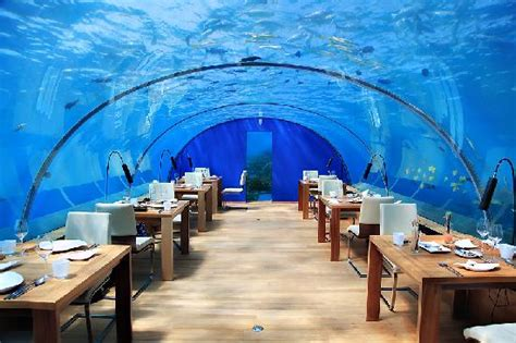 ithaa undersea restaurant unusual and fascinating tourist attractions 2