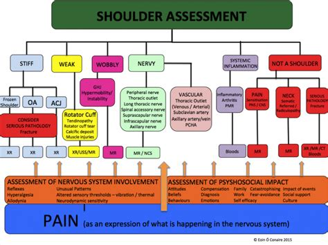 Detox Patient Differential Diagnosis by Shoulder Examination Physiopedia