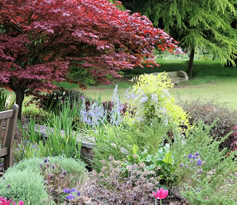 Garden Essex Gardens Open Gardens Garden Centre Plant Nursey Tea