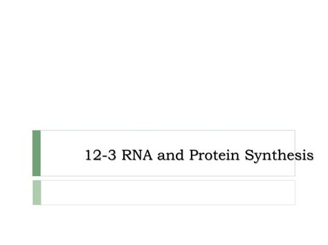 Section 12 3 Rna And Protein Synthesis Answers by Section 12 3 Rna And Protein Synthesis Rna And Protein Synthesis Docslide Ppt 12 3 Rna And