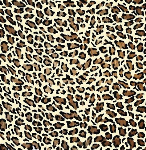 16 vector animal print images animal print vector leopard print vector