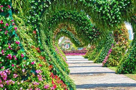 imagenes jardines mas hermosos mundo miracle garden dubai los jardines mas hermosos del mundo