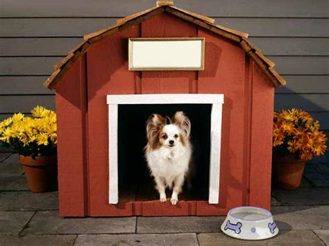 Types Of Dog Houses Different Types Of Dog House