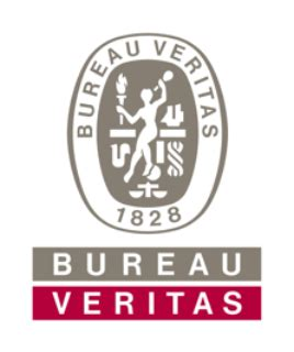 Buro Veritas by Logo