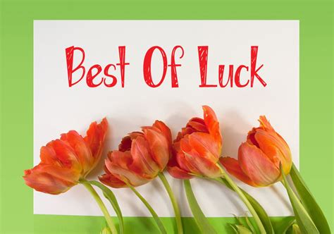 bet of luck all the best images with quotes good luck wishes messages