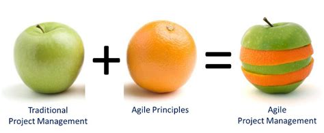 fruity v agile vs waterfall project management changing the