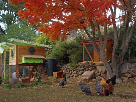 garden coop chicken coop plans thegardencoopcom
