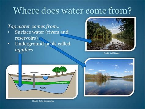 where does come from credit frank mcshane ppt
