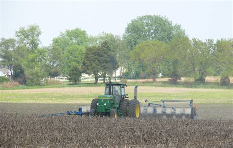 soybean planting intentions for 2015 may be trimmed