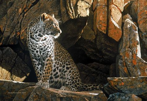 leopard cat painting animal paintings johan hoekstra wildlife collection