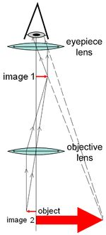 optical microscope wikipedia