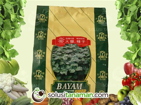 Harga Benih Bayam Hijau bayam hijau 500gr benih bibit tanaman sayur