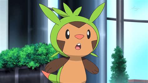 chespie pokemon wiki fandom powered  wikia