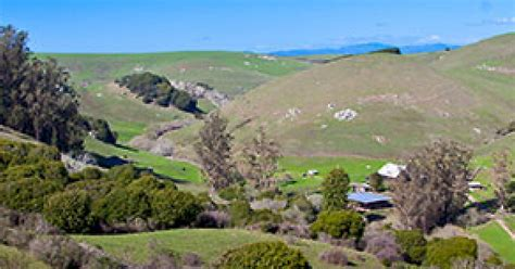 marin visitors bureau marin county 2015 marin measure a hike to thacher ranch june 2015 marin county
