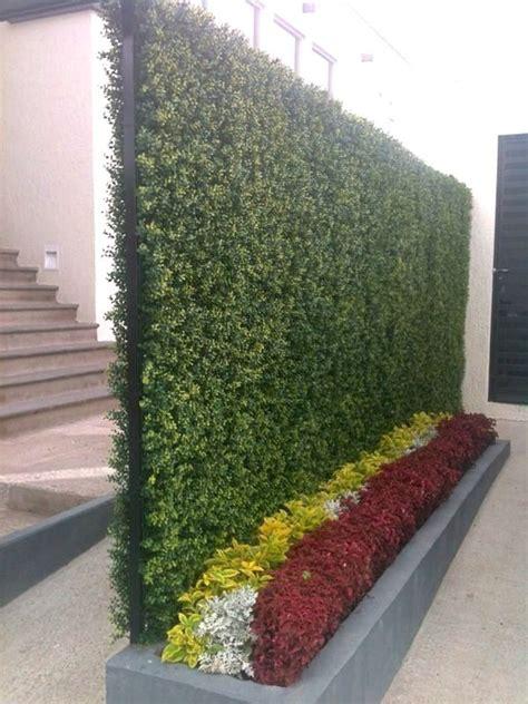 imagenes muros verdes m 225 s de 25 ideas fant 225 sticas sobre jardin vertical