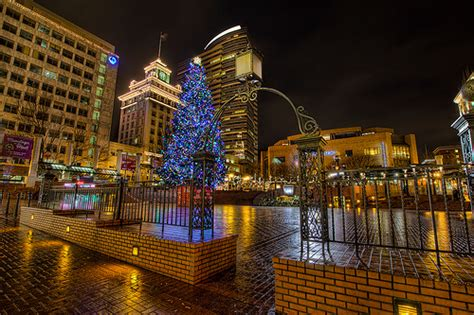 images of portlands xmas trees flickr photo