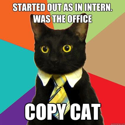 Office Cat Meme - the best of business cat smosh