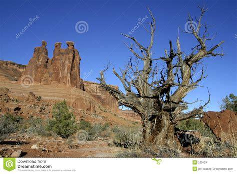 rugged outdoors rugged outdoors royalty free stock images image 230529