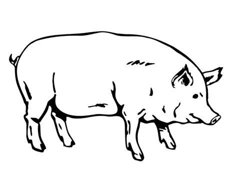 mama pig coloring page dibujos de cerdos para colorear y pintar