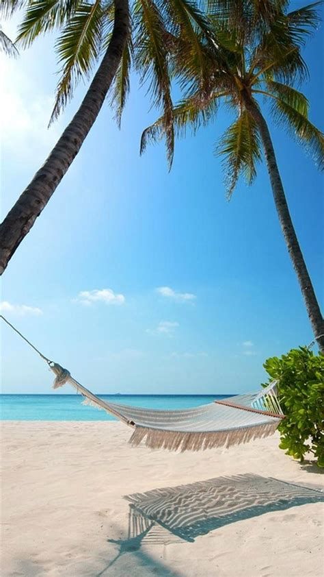 exotic beach palm trees hammock android wallpaper