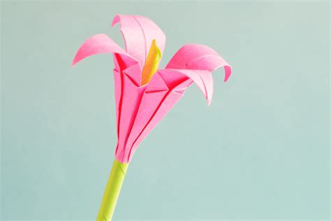 Basteln Mit Papier Blumen by Mit Blumen Basteln Diese Diy Ideen Bringen Dich Ins Schw 228 Rmen