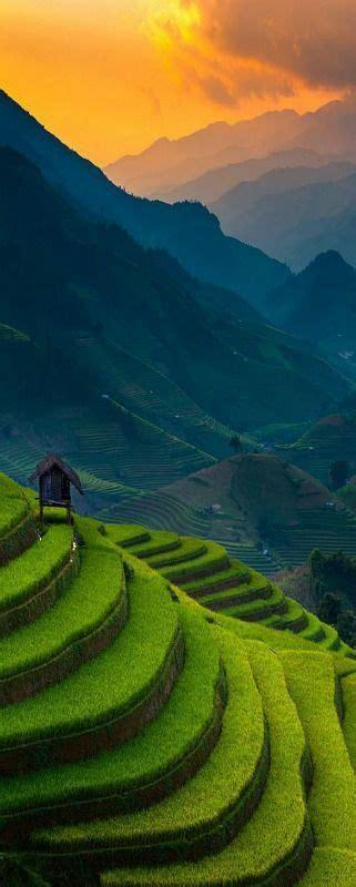famous rice terraces   world viral planet