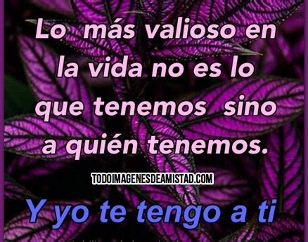 frases de amistad 1000 images about fraces de amistad on pinterest