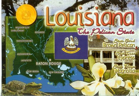 louisiana map cards louisiana map card remembering letters and postcards