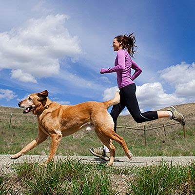 working with dogs ways to work out with your health