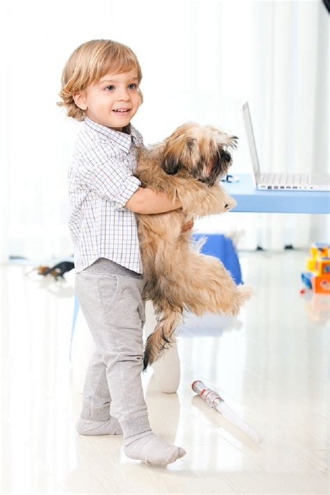 can i take my puppy out after second vaccination top 10 reasons why you should get your child a top inspired