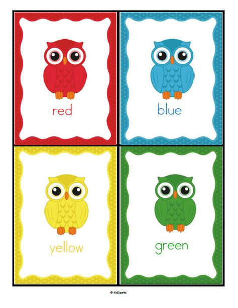owl colors owls colors posters
