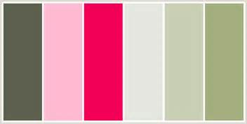 pink is a combination of what colors colorcombo126 with hex colors 5c604d ffbad2 f20056 e5e7e1 c8cfb4 a3ae7e