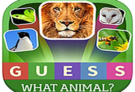 guess  animal quiz answers  cheats cool apps man