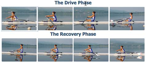 sculling boat positions begin to dig eye position to support rowing stroke