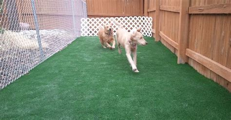 dog houses at costco dog run with fake grass costco partition off yard and make shade cover rock along