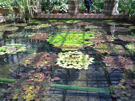 giardino artificiale laghetti artificiali