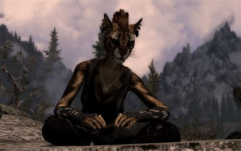 skyrim radioreggaes hair workshop for khajiit uesp forums view topic the what you did in skyrim