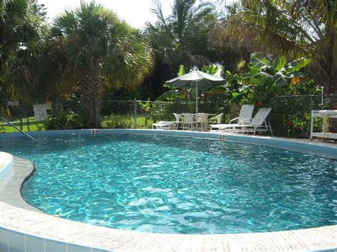 pool at riverpalm picture of river palms cottages and
