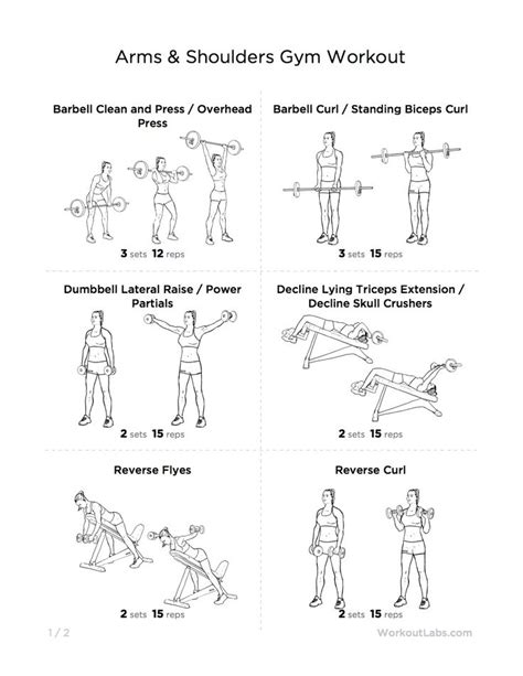 10 best images about back and shoulder workouts on