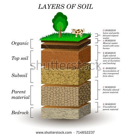 layers soil education diagram mineral particles stock